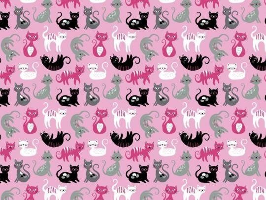 Plátno s potiskem kočičky na růžové