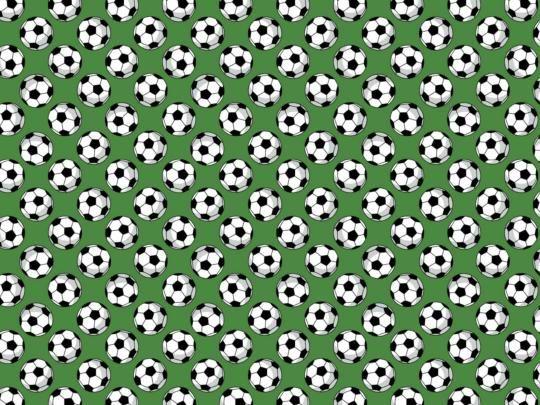 Plátno s potiskem fotbalové míče na zelené